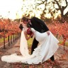 fall_vineyard_06