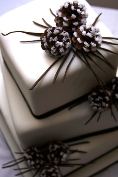 fabulous-winter-wedding-cakes-12