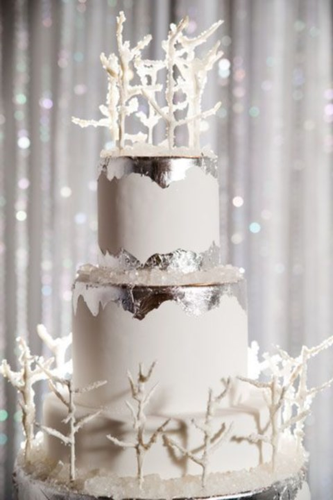 fabulous-winter-wedding-cakes-27