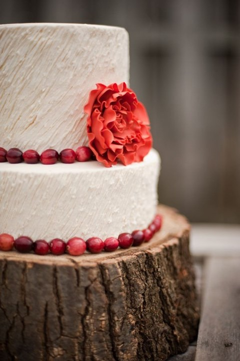 fabulous-winter-wedding-cakes-42