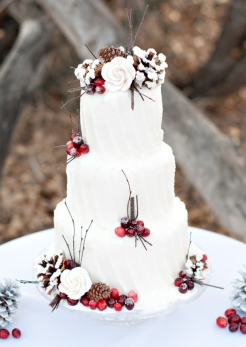 fabulous-winter-wedding-cakes-74