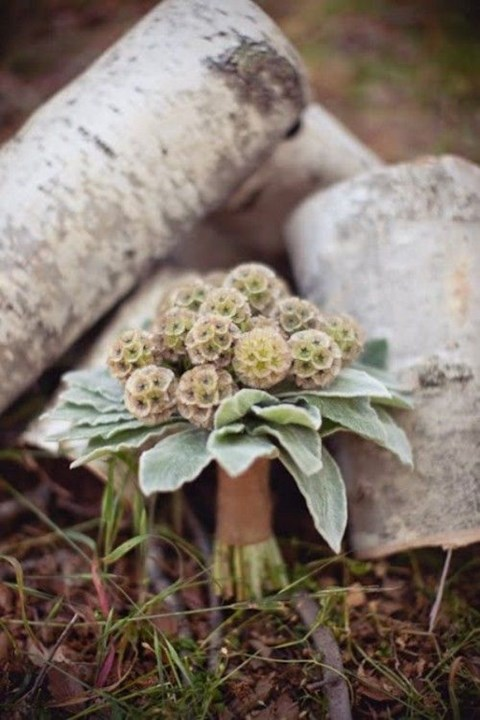 unique-and-beautiful-winter-wedding-bouquets-youll-love-52