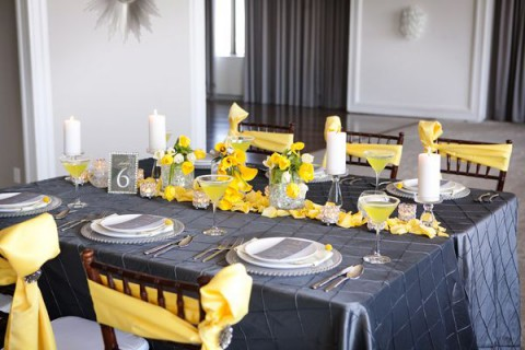 grey_and_yellow_34