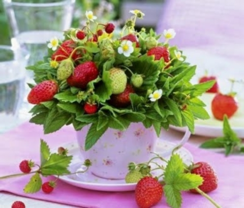 summer_centerpiece_61