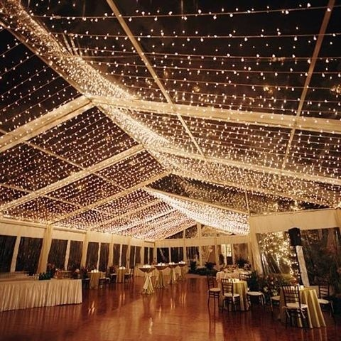 wedding_lights_35