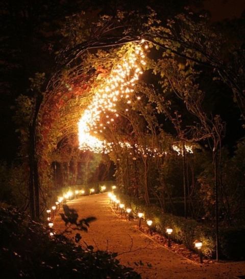 wedding_lights_40