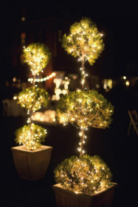 wedding_lights_58