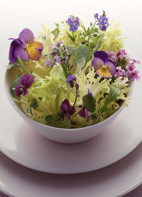edible_flowers_02