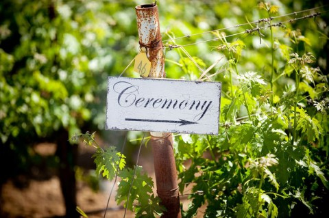 outdoor_vineyard_52