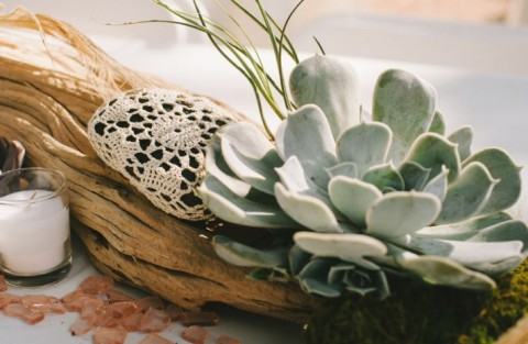 succulent_decor_04