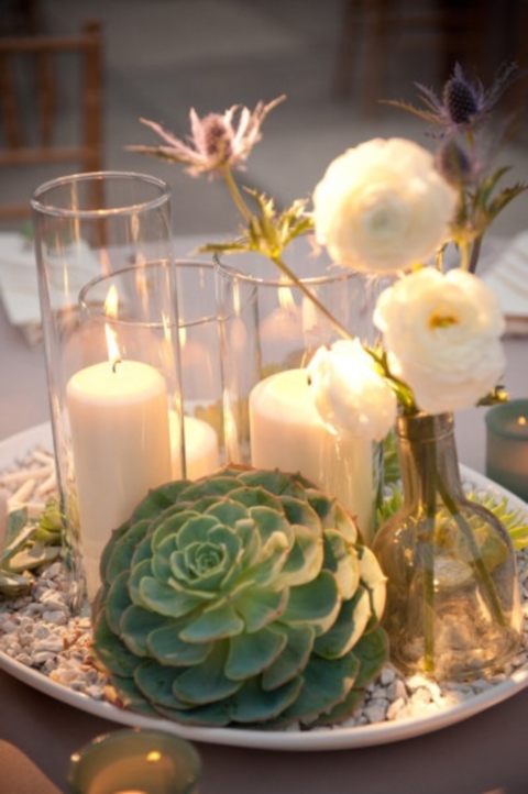 succulent_decor_28