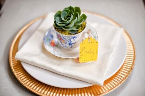 succulent_decor_38