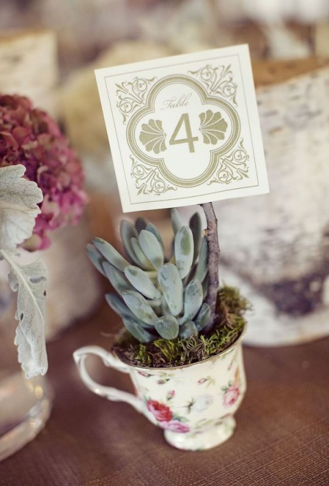 succulent_decor_49