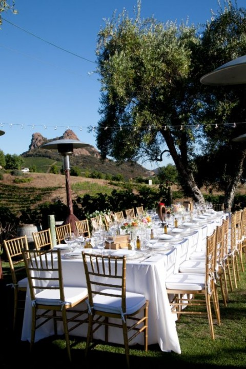 vineyard_reception_13