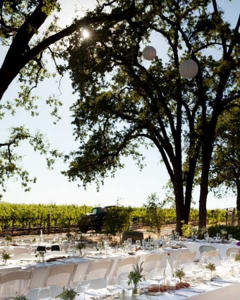 vineyard_reception_32
