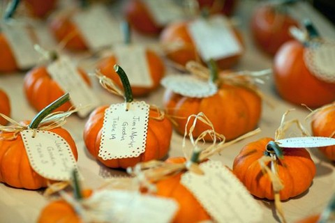 fall_favors_15