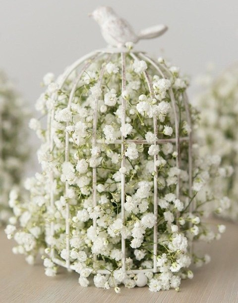Baby Breath For Your Wedding: 50 Ideas