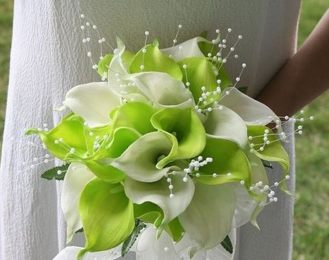 50 Crispy Lime Green Wedding Ideas