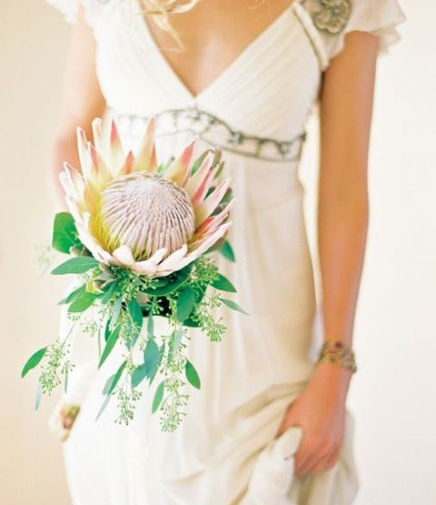 63 Trendy Protea Wedding Ideas To Rock