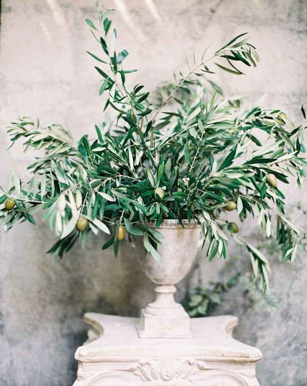 77 Natural Olive Branch Wedding Ideas