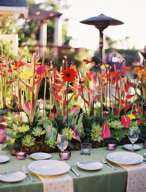 tropical_table_44