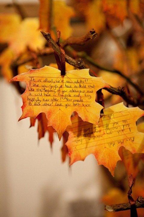 fall_leaves_13