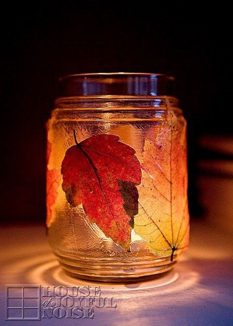 fall_leaves_26