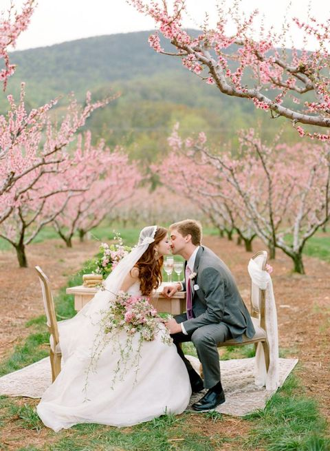 blooming_orchard_wedding_02