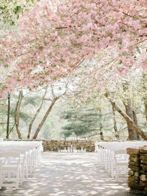 blooming_orchard_wedding_05