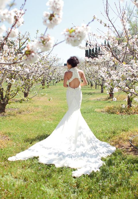 blooming_orchard_wedding_26