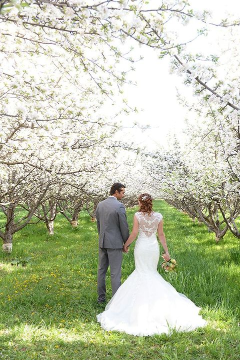 blooming_orchard_wedding_29