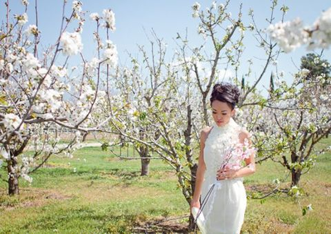 blooming_orchard_wedding_36