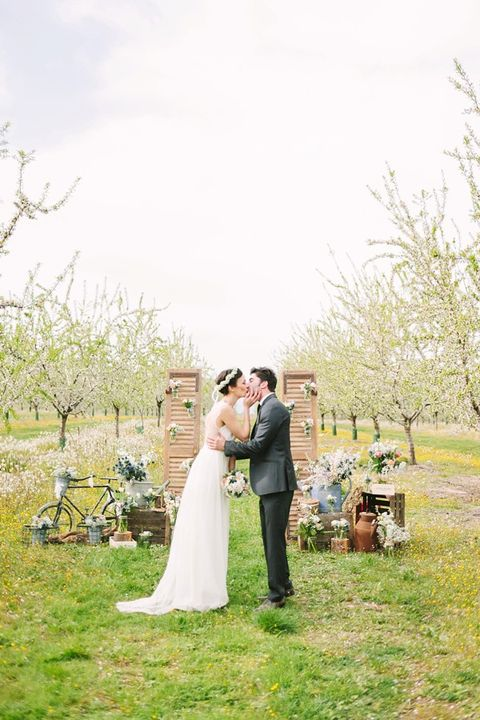 blooming_orchard_wedding_46