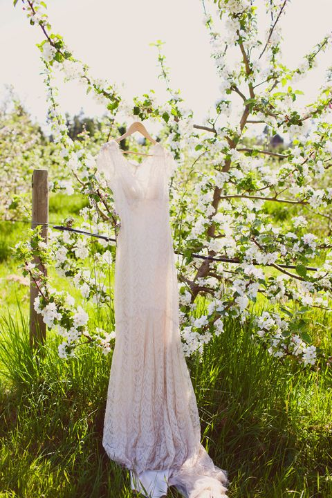 blooming_orchard_wedding_49