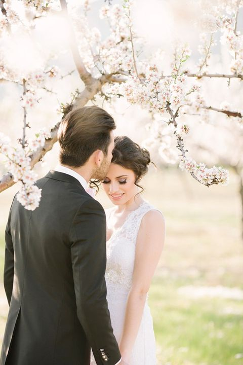 blooming_orchard_wedding_52