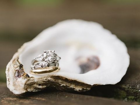 oysters_41