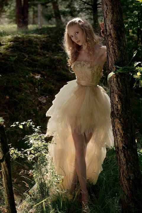 enchanted_forest_33