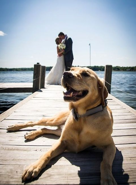 lake_wedding_21