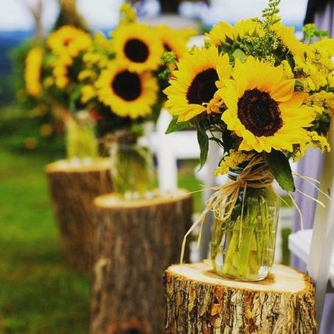 sunflower_wedding_58