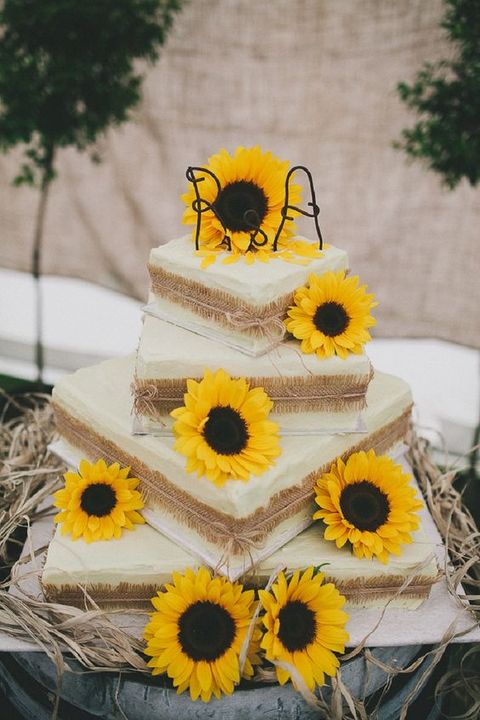 sunflower_wedding_75