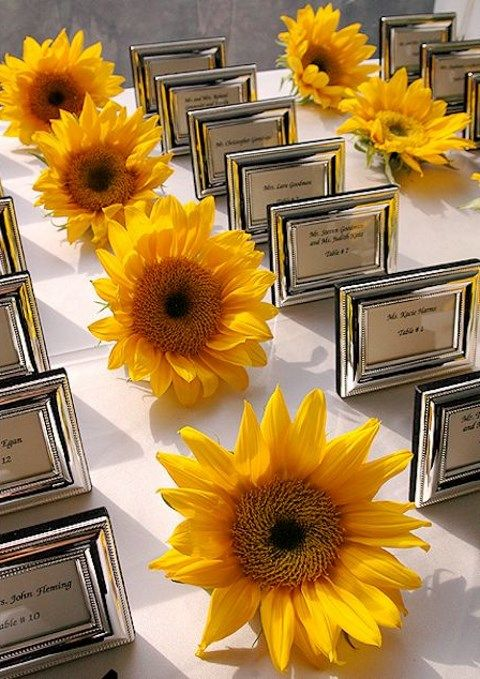 sunflower_wedding_82