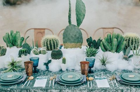 52 fun cactus wedding ideas to have a look at for Decoration jardin cactus