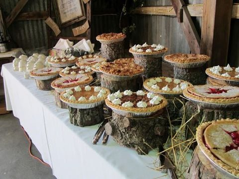 pies with whipped cream placed on wood logs