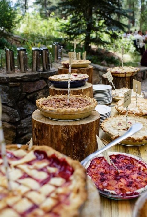 tasty pies served on wood logs and plates