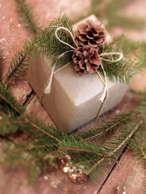 craft paper boxes with fir branches and pinecones
