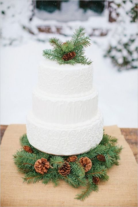 fir branches with pinecones