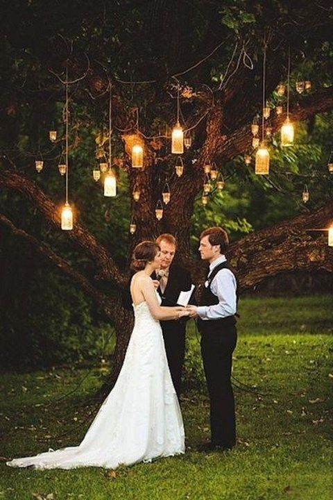 huge old tree with hanging lanterns for the ceremony
