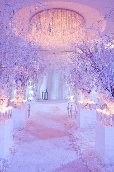 lights on the branches and under them along the aisle