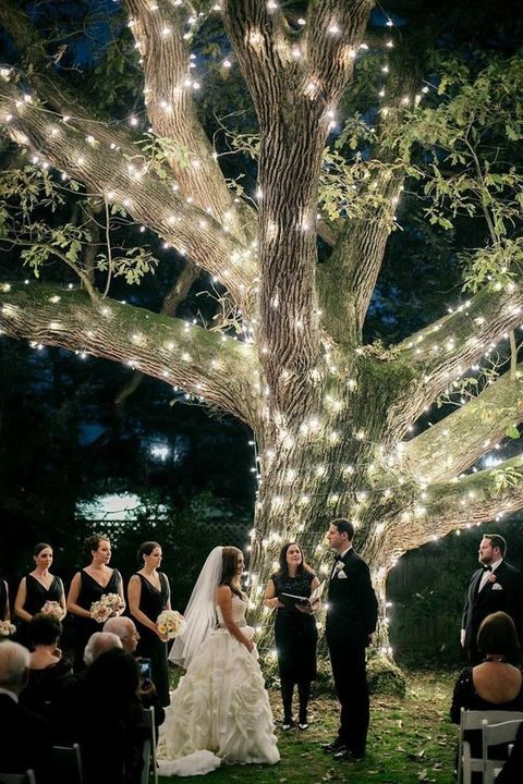night ceremony by a giant tree with lights