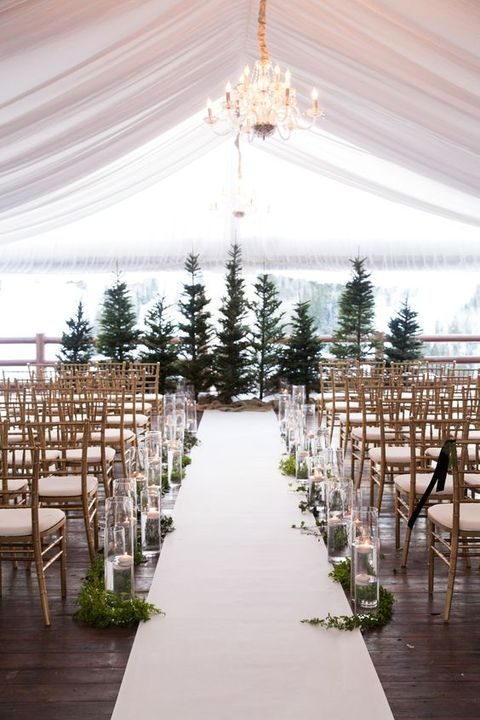 real fir trees can be a backdrop for your ceremony